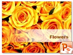 PowerPoint Flowers